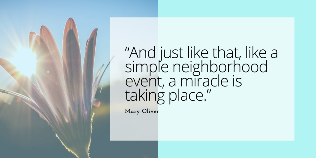 mary oliver quotes to inspire event planners